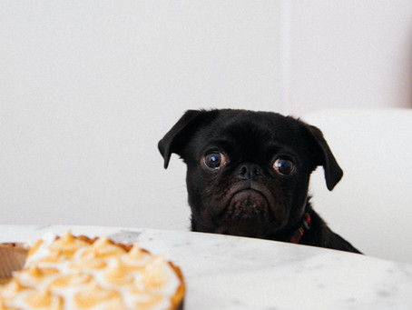 Calories Part 3: How to create a deficit.