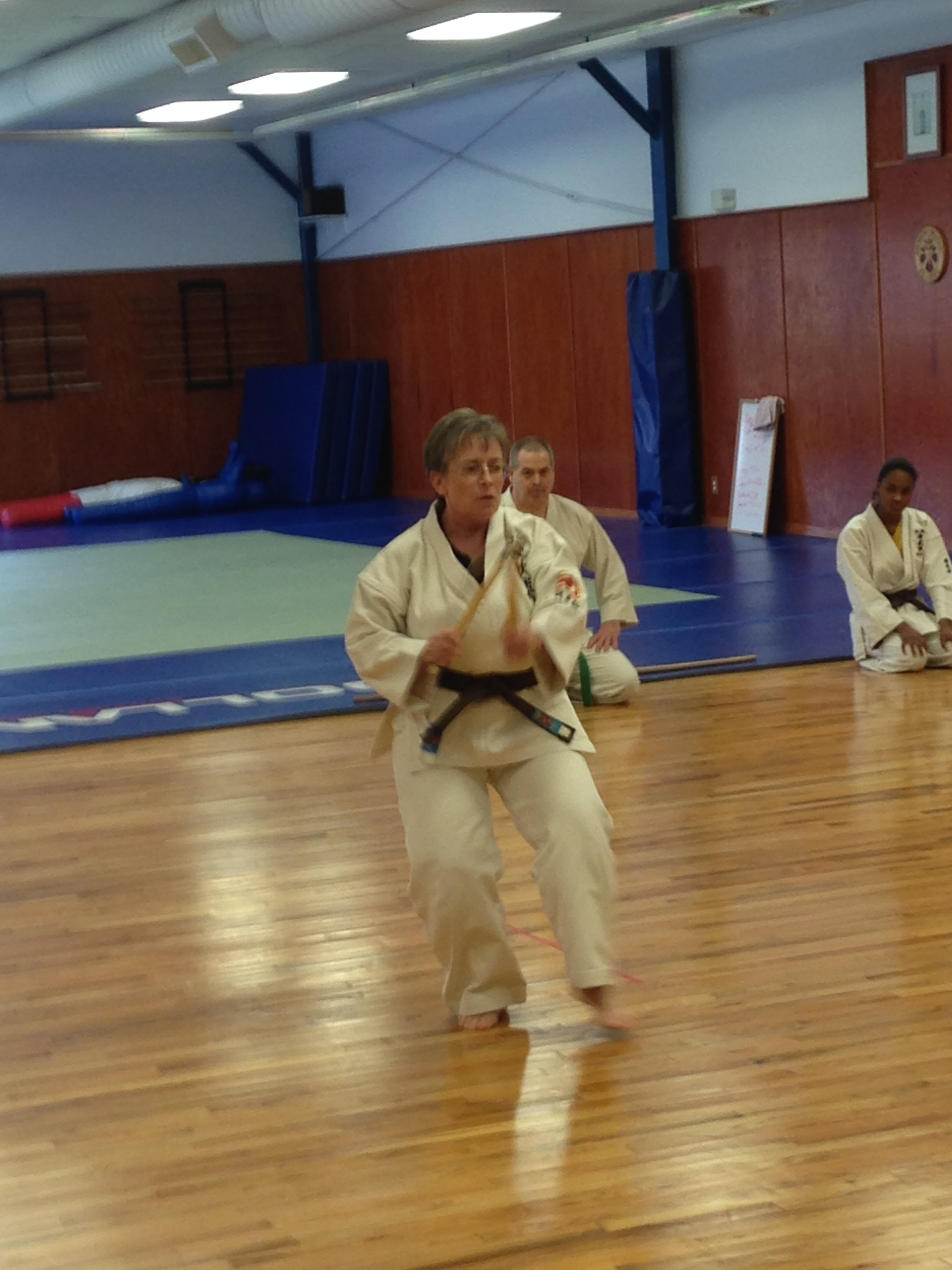 Kobudo kama demonstration