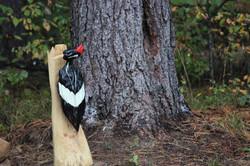 Alonzo Montoya Chainsaw Carved Bird 16.JPG