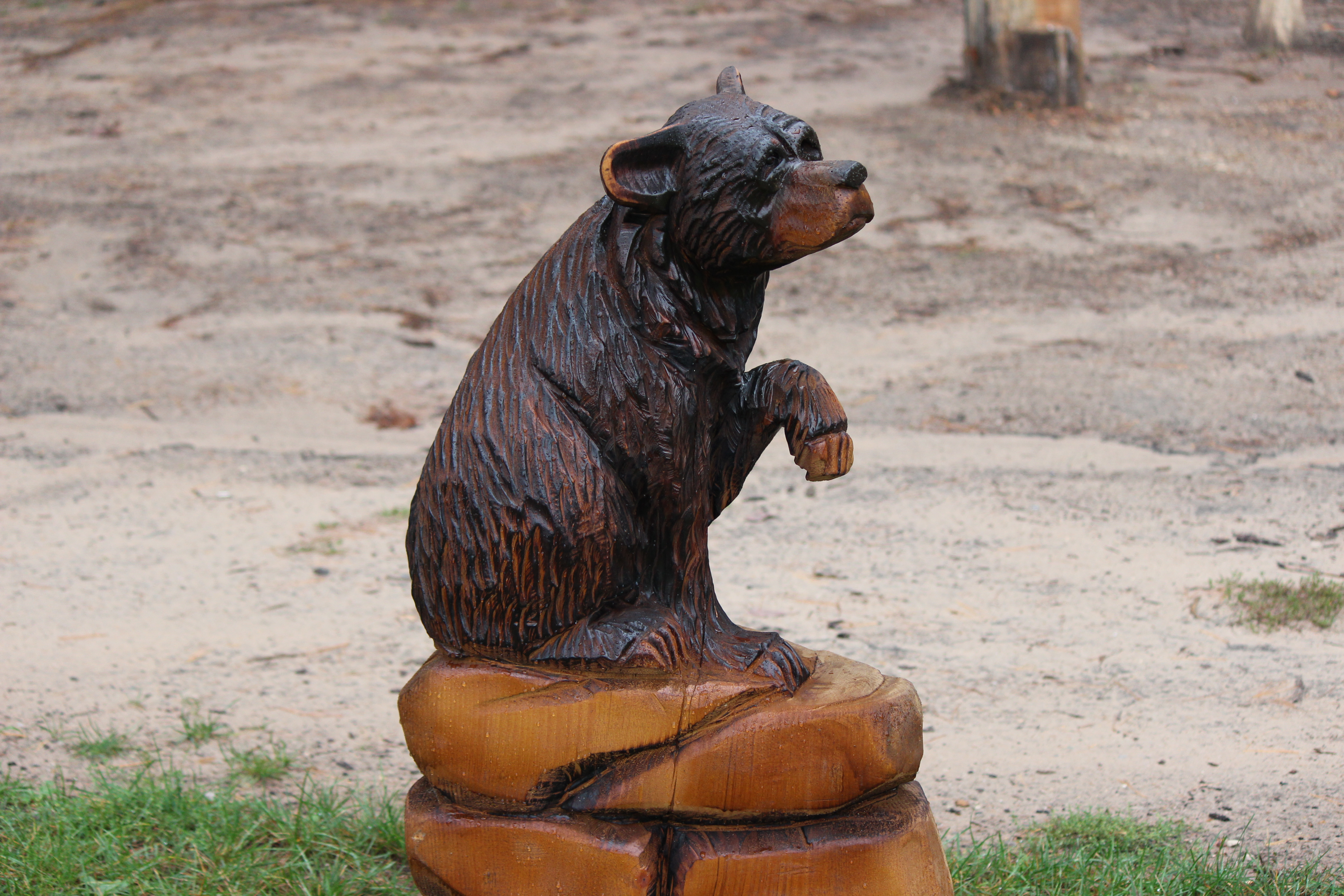 Alonzo Montoya Chainsaw Carved Bear 8.JPG