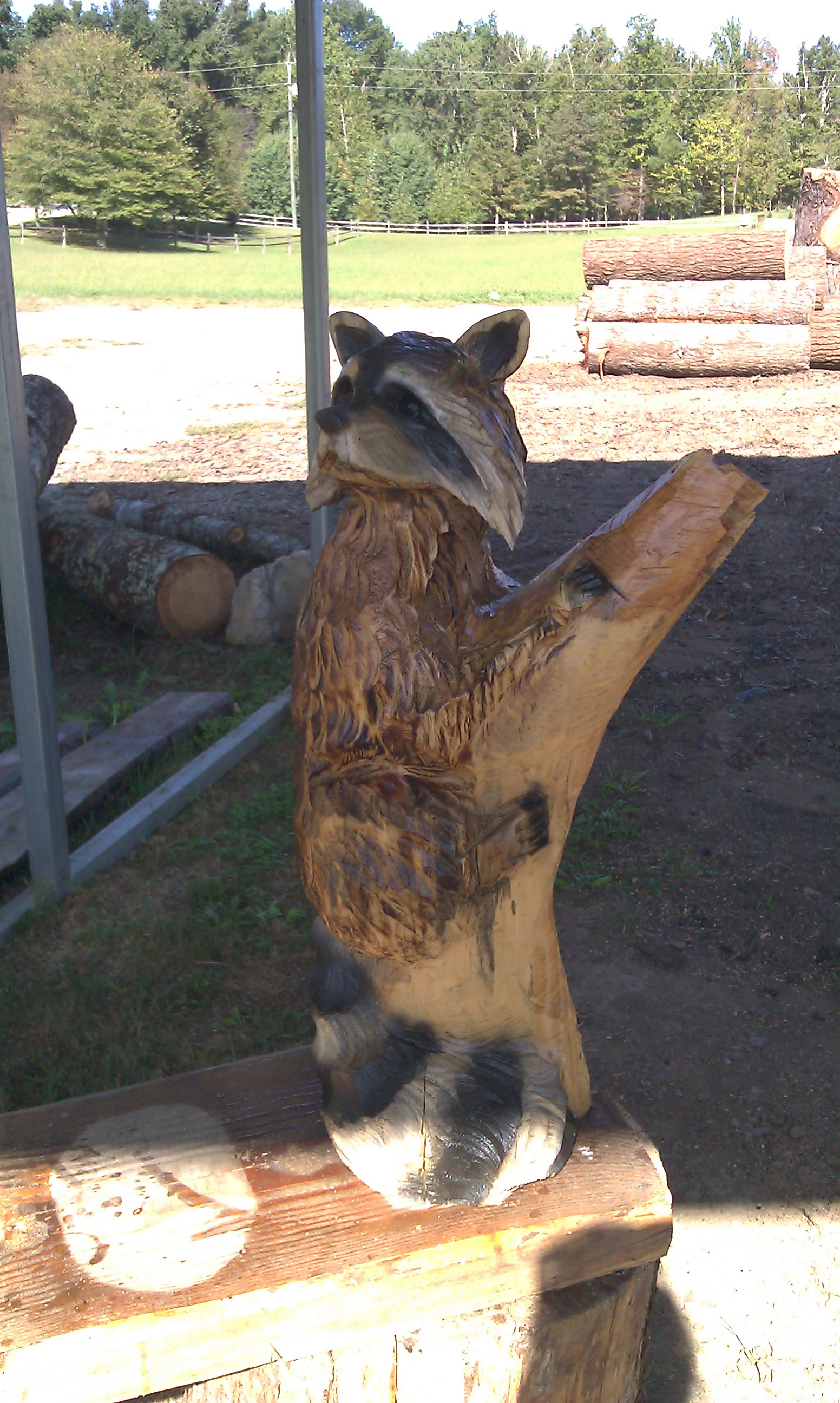 Chainsawcarvings raccoons