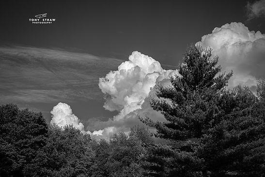 cloudsw.jpg