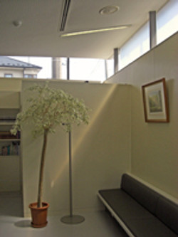 待合室の窓は、天井と壁の間に