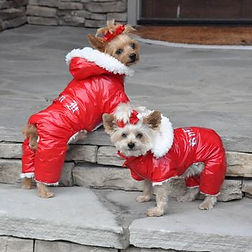 red-ruffin-it-dog-snow-suit-harness-7708