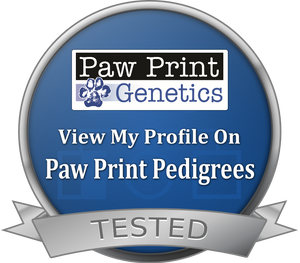 Paw Print Genetics Test Results