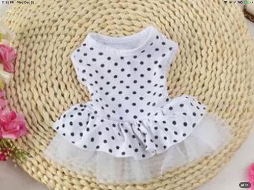 White & Black Polka Dot Dog Dress