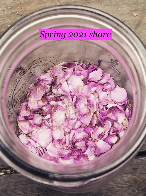 Spring 2021 Herbal CSA