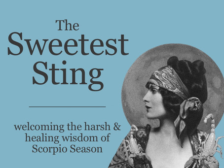 The Sweetest Sting: The Wisdom of Scorpio Season