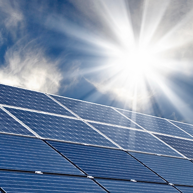 Solarcheck Fizzin Digital Marketing
