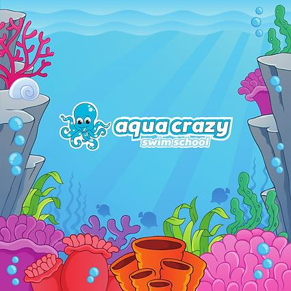 Aqua crazy swim school Fizzin Digital Ma