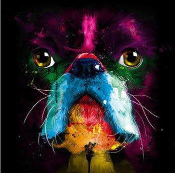 Colourful Bully