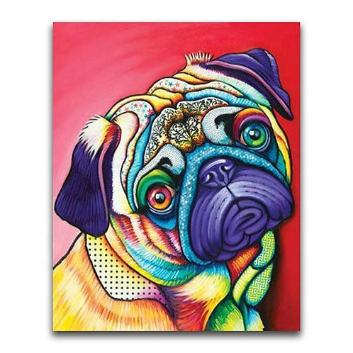 Colourful Pug