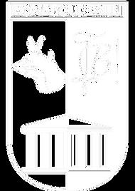 home boudewijn schild logo.png