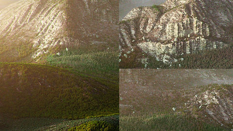 environment_zoomUp.jpg