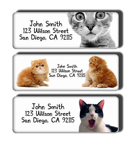 Cat Labels