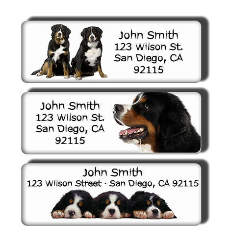 Bernese Mountain Dog Labels