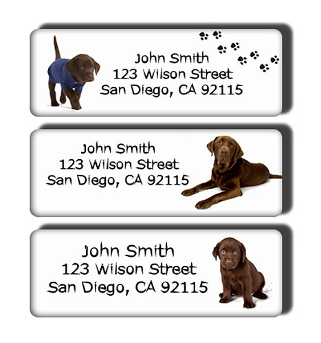 Chocolate Labrador Labels