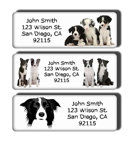 Border Collie Labels