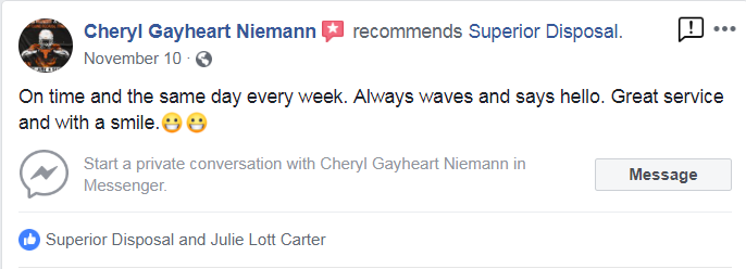 cheryle niemann review.PNG