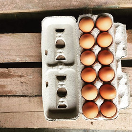 Find farm FRESH Eggs this Saturday from