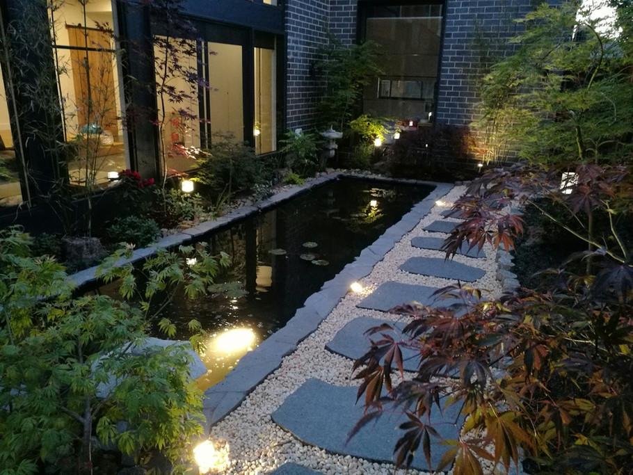 Japanese garden - Bulleen