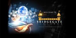 New BRIDGEGATE Book horz
