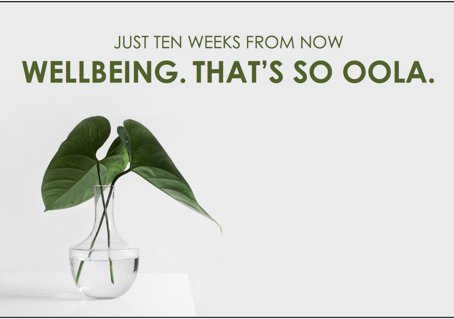 wellbeing. that's so oola.