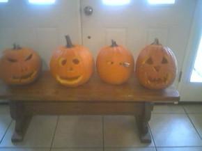 willow pumpkins.jpg