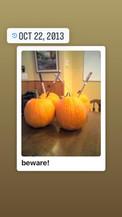 willow pumpkins 2 (1).jpg