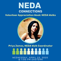 Neda Connections.png