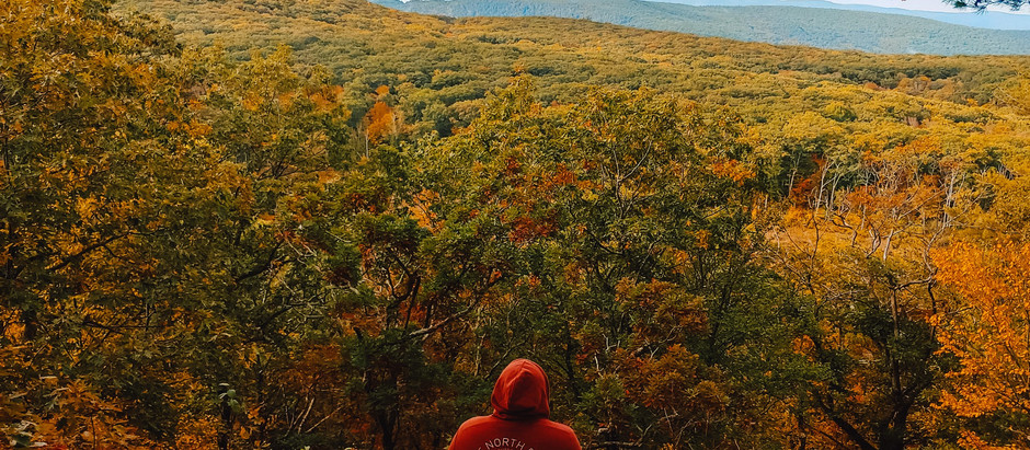 Why You Should Visit the Lower Berkshires this Fall