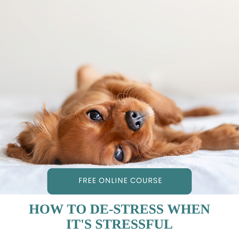 The situation might be stressful, but that doesn't mean you have to be stressed out.
