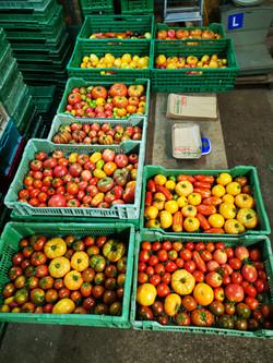 Et pour quelques tomates de plus