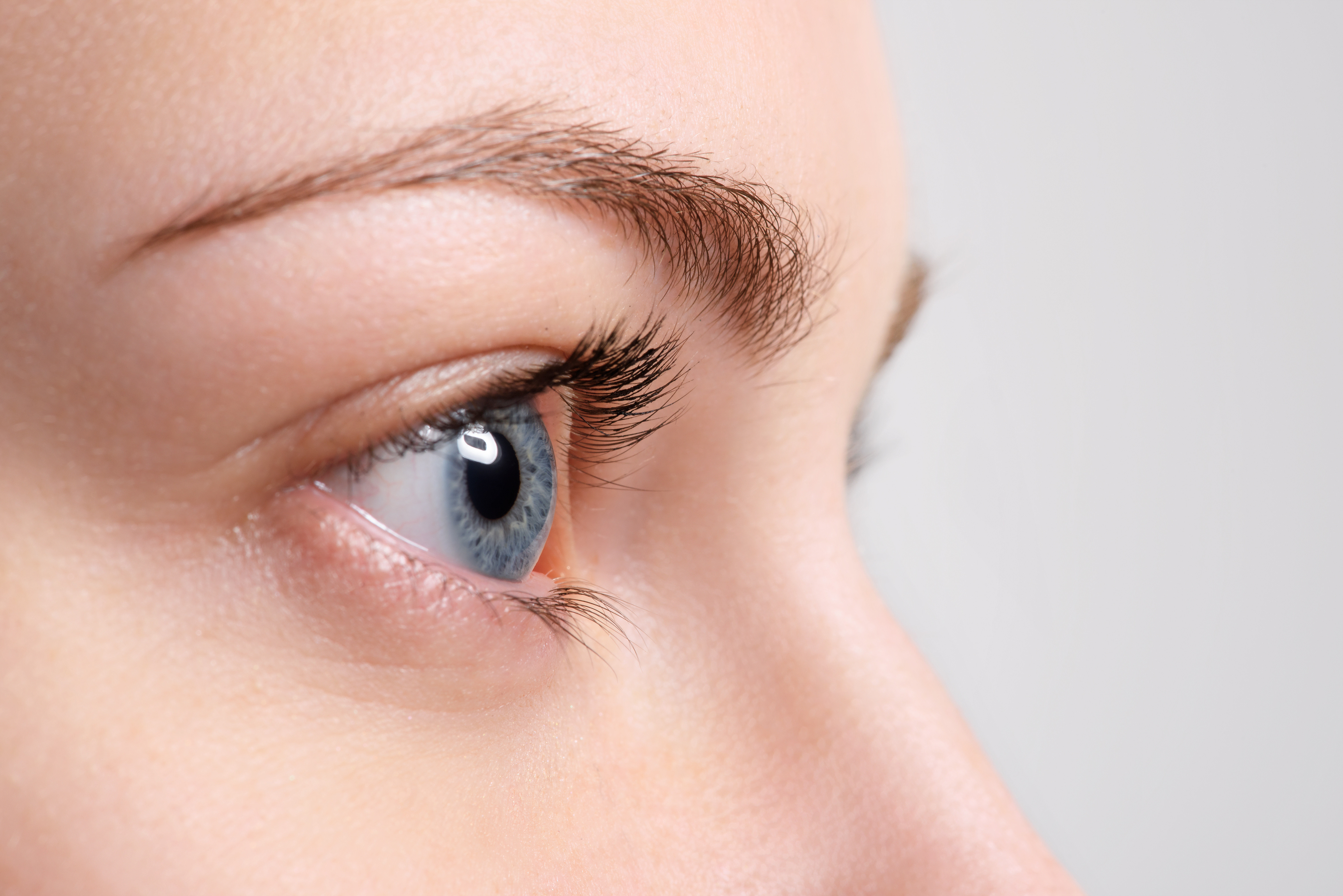 Brow Tidy (within 4-5 weeks)