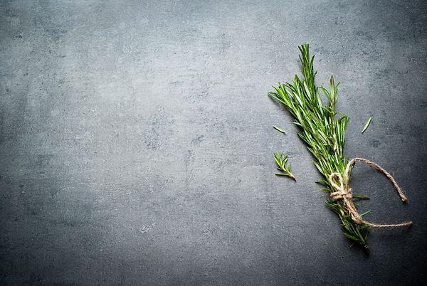 Sprigs of rosemary tied with string on a