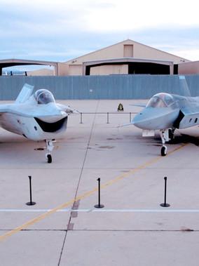 The Joint Strike Fighter Program