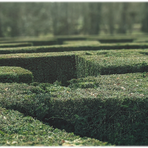 The Maze of the Markets!
