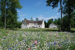 Les_Tinarages-fleuries.jpg