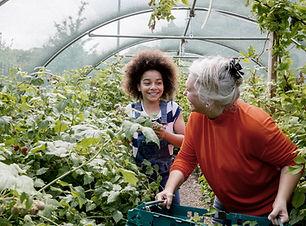 Barn plantering i växthuset