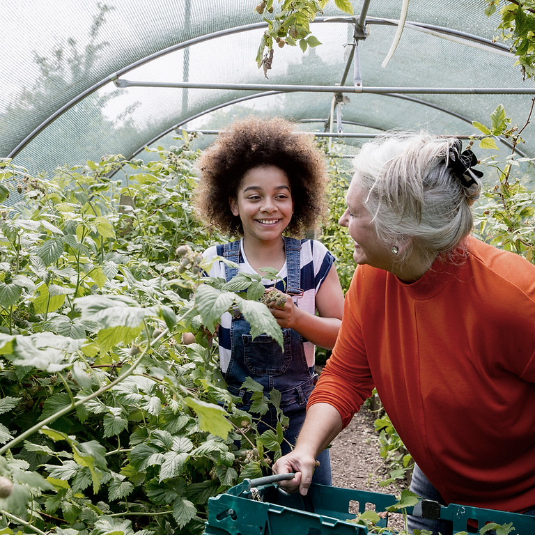 Lunch and Learn - Extending your season w/ a Hoop House
