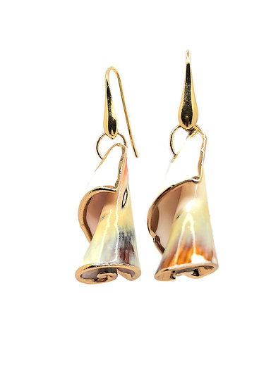 Orecchini in Argento 925 con conchiglie originali dei Caraibi