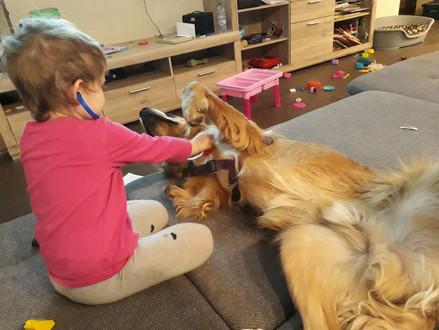 Unsre Hunde werden regelmäßig untersucht ❤