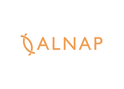 ALNAP card updated.png