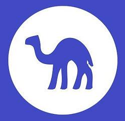no camels.jpg