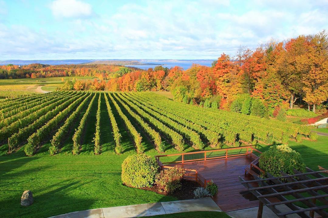 Traverse City winery