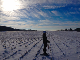 Snow shoe the path... that ends up at the back of a 150 acre farm!