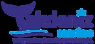 akdenizmarine logo_edited.png