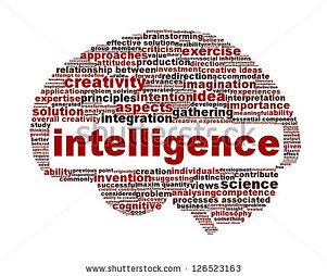 intelligence1.jpg