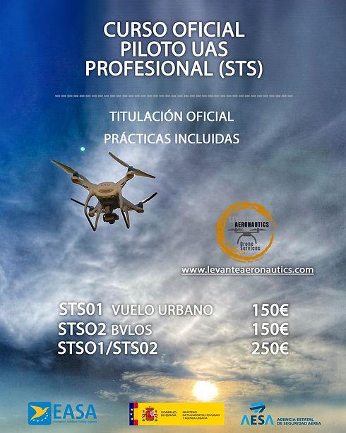 sts - Levante Aeronautics - Murcia.jpg