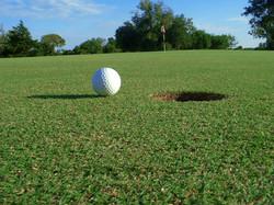Golf_Ball_Near_Success_Pics